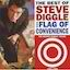 The Best of Steve Diggle and Flag of Convenience